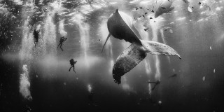 Nat Geo's Traveler Photo Winners