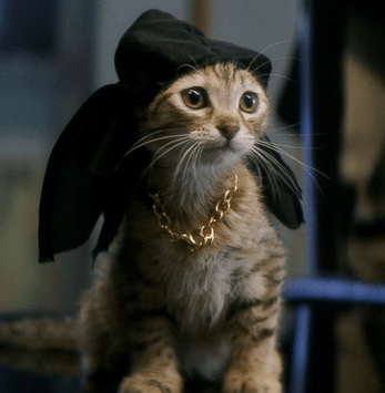 Move Over Ted……There's a New Keanu?!?!