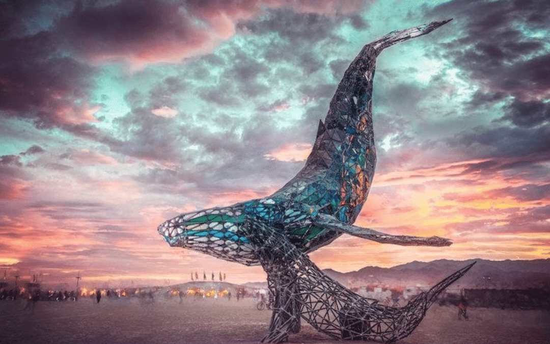 The Beauty of Burning man Discussed